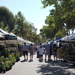 farmers market street view Harvard Ave Claremont